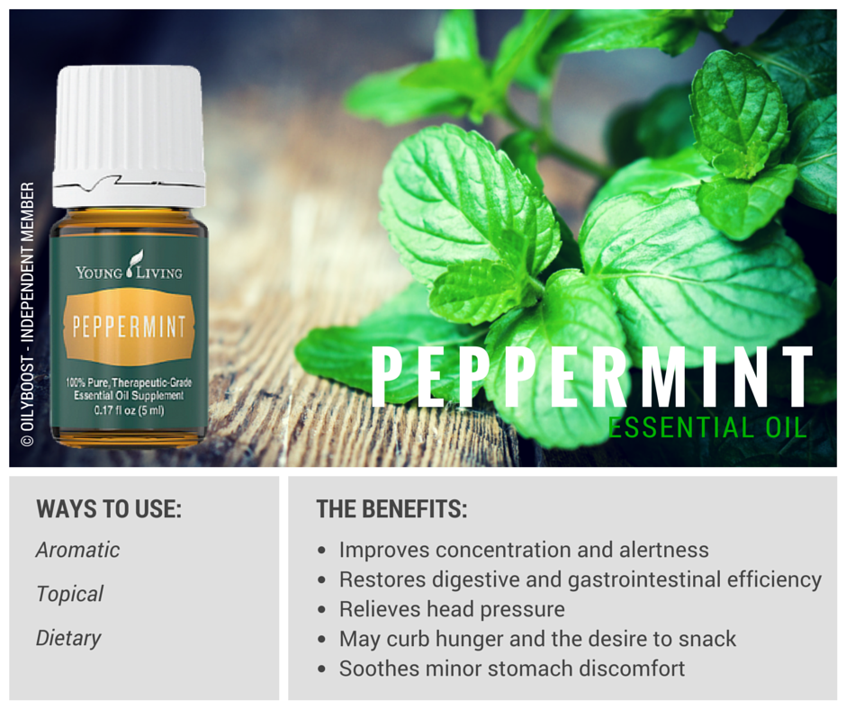 Peppermint Essential Oil benefits and uses