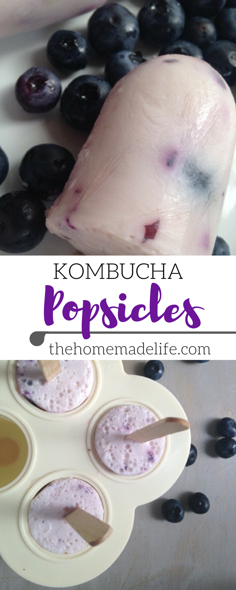 Blueberry Yogurt Kombucha Popsicles